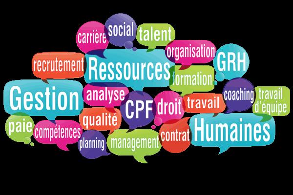 Formations éligibles au Compte Personnel de Formation (CPF)